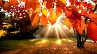 Есенна ваканция